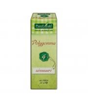 Polygemma Nr. 4 30 ml sinusuri