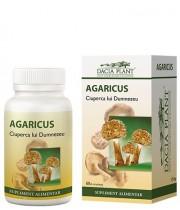 Agaricus 60 cpr