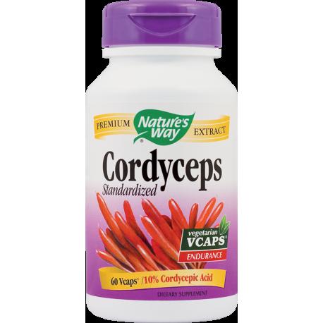 Cordyceps SE 500mg 60Vcps