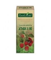 Extract Mladite Zmeur 50 ml