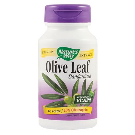 Olive Leaf 20% SE