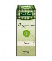 Polygremma nr. 3 50 ml Tuse