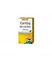 Cartilaj Rechin 740 mg 100 cps