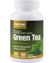 Green Tea 500mg 100cps